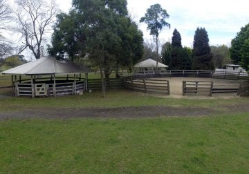 Horse Arenas - Agistment Exeter Southern Highlands